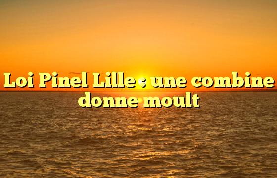 Loi Pinel Lille : une combine donne moult