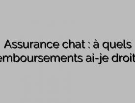 Assurance chat : à quels remboursements ai-je droit ?